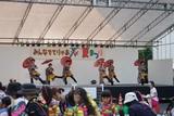 ダンシングアベニューM 5